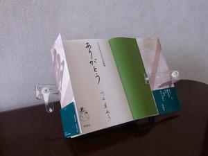 Srimg3309